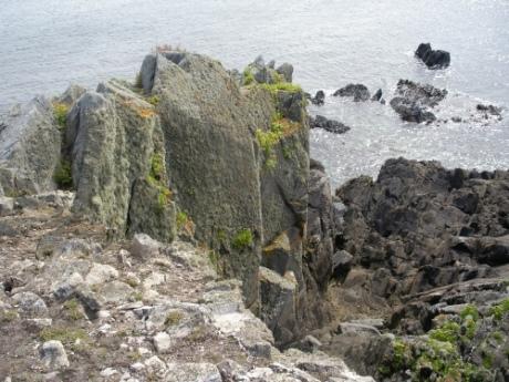 Shoreline, Quessant
