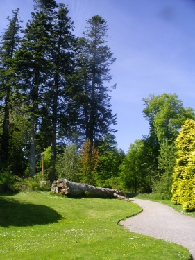 Clan Donald Trust Gardens